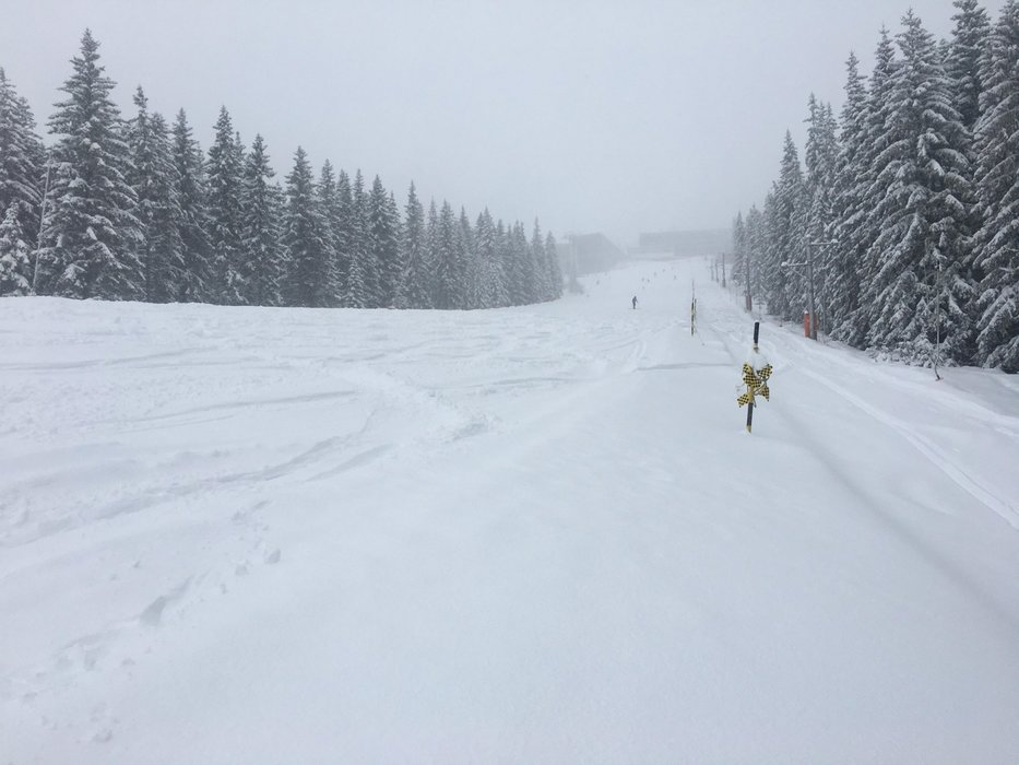 Powderalert in Jasna Low Tatras (4.-5.2.2020) - © TMR, a.s.