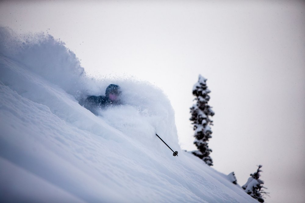 Let it snow at Alta for this pow hound - © Alta Ski Area/Rocko Menzyk