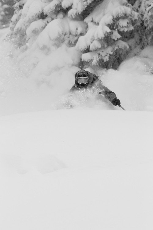 Skiing deep powder at Vail - © Jeff Cricco