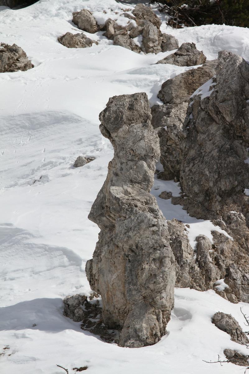 Impressionen aus dem Skigebiet Ehrwalder Alm - © Skiinfo.de
