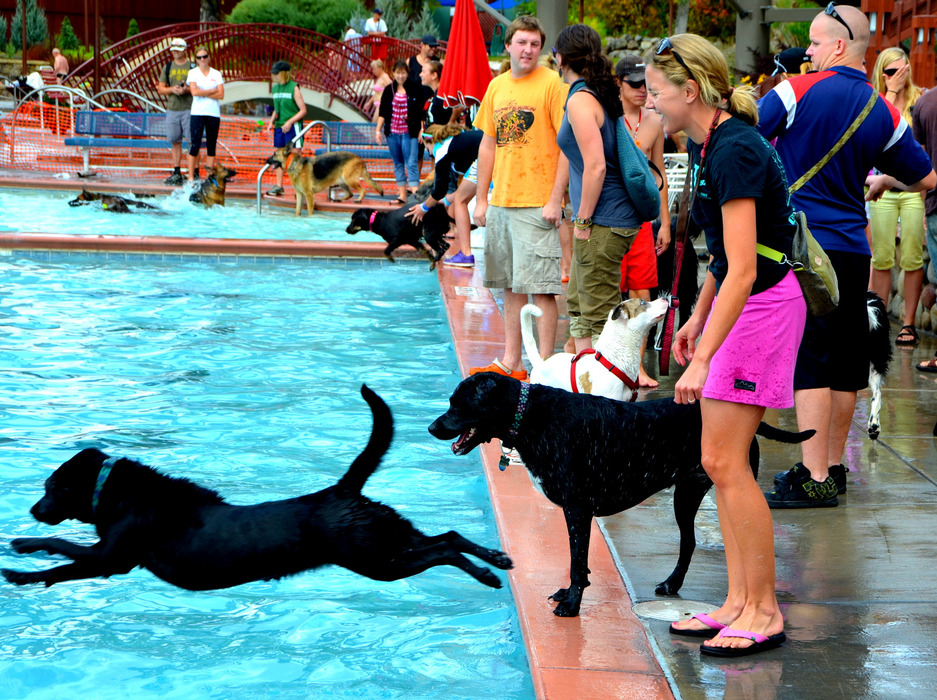 The Poochy Paddle is a bi-annual event at the Old Town Hot Springs in Steamboat Springs. - ©Photo courtesy Shannon Lukens.
