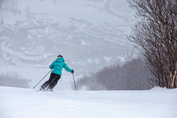 Mary Simmons storm skiing at Sugarbush.