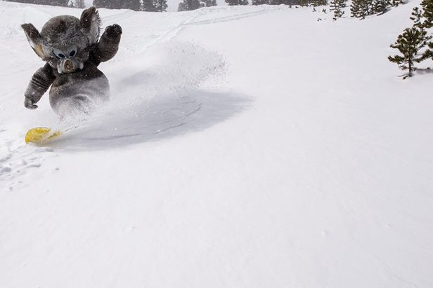 Where's the Snow this Weekend: West Coast Report 4/9/14- ©Mammoth Mountain