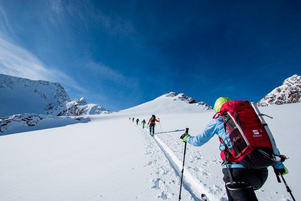Im Aufstieg zum Schrankogel Skigipfel (3350 m)  - © Erika Spengler