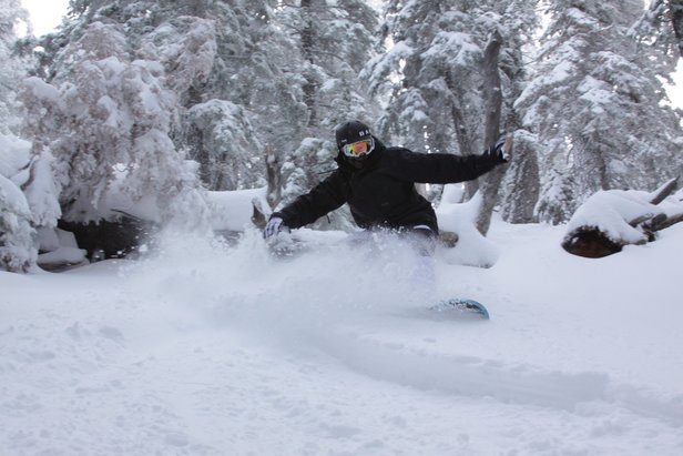 MLK Recap: Resorts Revel in Feet of Fresh- ©Mountain High