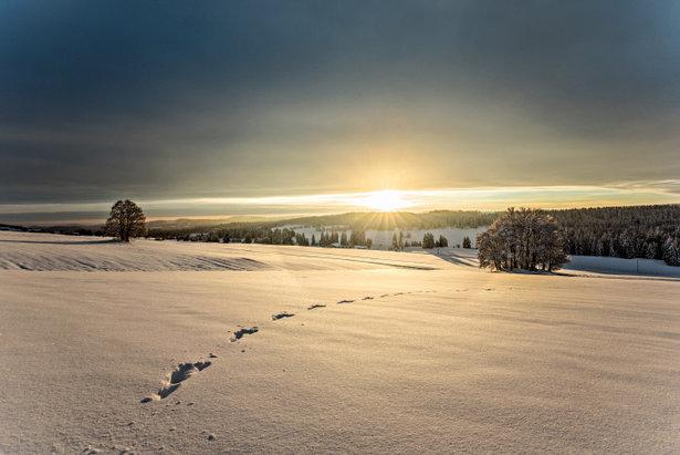 Skiën onder een staalblauwe hemel ©Switzerland Tourism - swiss-image.ch/BAFU/Marcus Gyger