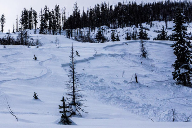A remote triggered avalanche on Jan. 17, 2016 at Icicle Creek in Cascade Mountains.  - © Northwest Avalanche Center