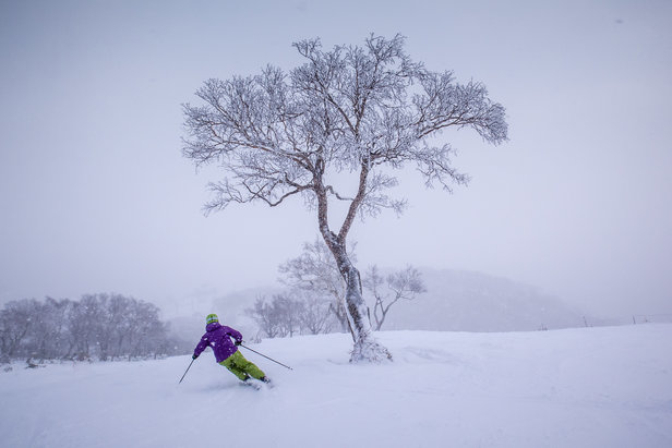 Seeking Skizen: How To Ski Japan ©Linda Guerrette