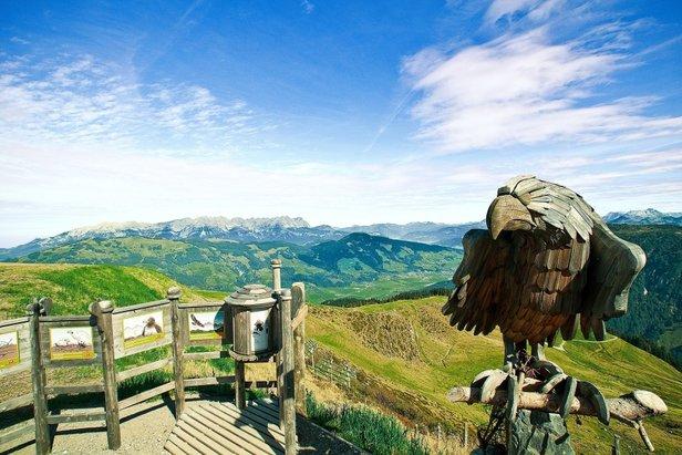 Sommerurlaub am Wilden Kaiser - ©Wilder Kaiser