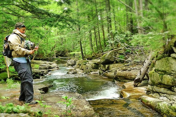 The wilderness near Loon Mountain offers seclusion, gorgeous streams and plenty of fish ranging from bluegill to northern pike.   - © Stephanie Gould at dirtshopstudio.wordpress