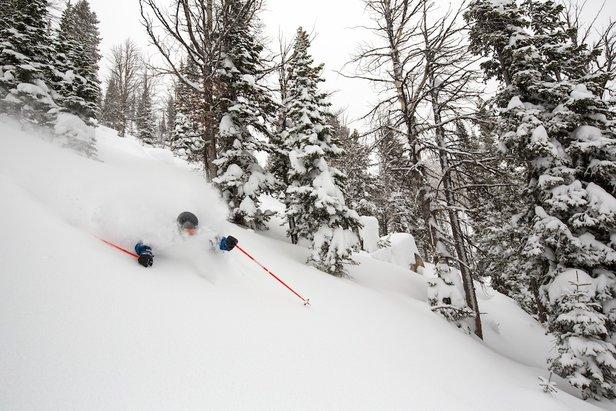Best Terrain for 2016: Jackson Hole ©Jackson Hole Mountain Resort