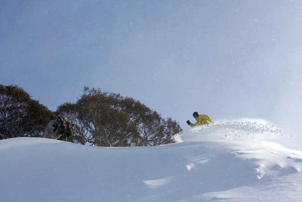 Fresh Snow Dumping In Australia