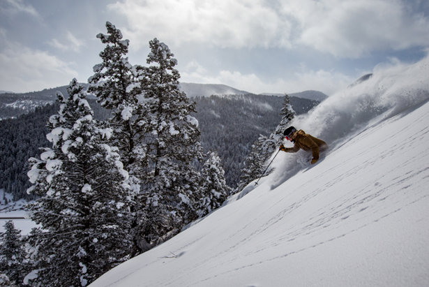 Wake up and smell the fresh powder at Beaver Mountain. Or better yet, ski it.  - © Jay Dash