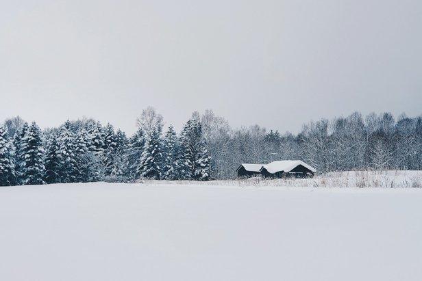 Casa solitaria entre los árboles en el nevado Niseko  - © Ian Lai