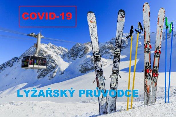 COVID-19 Průvodce pro lyžařeGorilla Fotolia OTS
