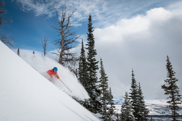 11 FEET of snow this month: Deepest January ever for Jackson HoleJackson Hole Mountain Resort