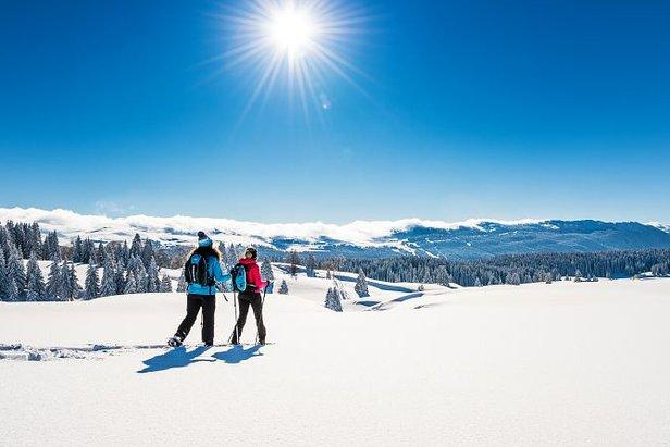 Respectez la nature et découvrir le territoire, un principe majeur du slow ski dans les Montagnes du Jura...