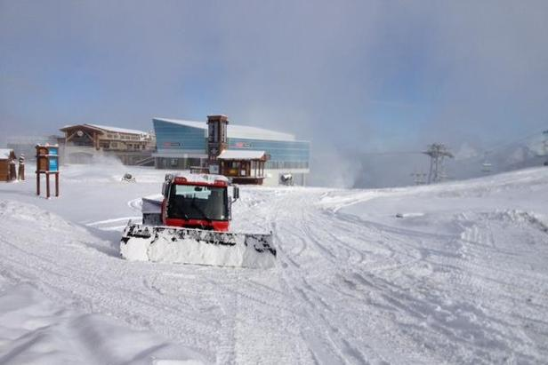 Snowcats get WhistlerBlackcomb ready for opening day.