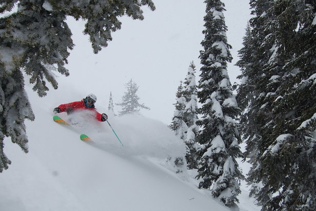 Powder piles up at Fernie in British Columbia.