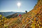 Mountainbiker in Flachau - ©Salzburger Land Tourismus