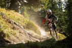 Bikeparks im Salzburger Land - ©Saalfelden Leogang