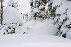La neige fait son grand retour