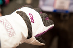 The Best New Ski & Snowboard Gloves for 2013/2014 - © Ashleigh Miller Photography