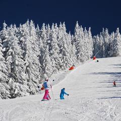 Skigebiete in Osteuropa: Günstig Skifahren in Bulgarien, Slowenien, Polen und Co. - ©Christoph Schrahe