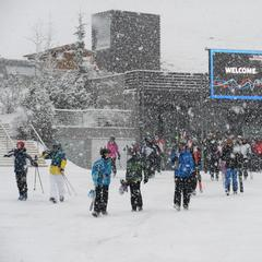 Snow report: Widespread powder for the Alps - ©Val Gardena
