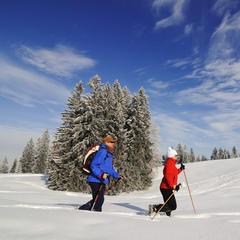 Winterwanderung auf dem ersten Premium-Winterwanderweg Deutschlands - Hemmersuppenalm, Reit imWinkl, - © Norbert Eisele-Hein