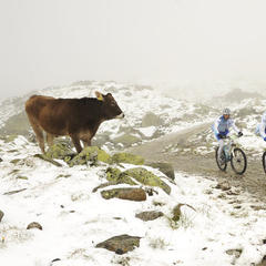Craft Bike Transalp 2011 - 3. Etappe - © Delius Klasing