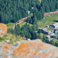 Eine wunderbare Tour mit der grünen Natur Mittelpunkt - © Cordula Seiler/Graubünden Ferien