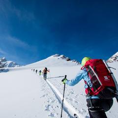 Im Aufstieg Schrankogel Skigipfel (3350 m) - © Erika Spengler