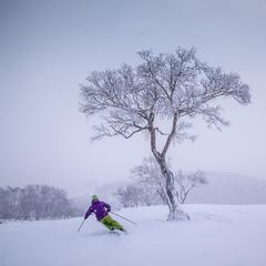 Seeking Skizen: How To Ski Japan - ©Linda Guerrette