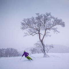 Seeking Skizen: How To Ski Japan - ©Linda Guerrette
