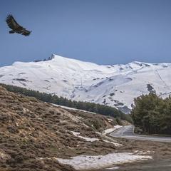 Španělské pohoří Sierra Nevada je atraktivním cílem turistů v zimě i v létě - © flickr.com