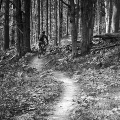 Kimmer's Trail - © Ryan Thibault