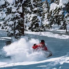 Mammoth powder skiing 15 feet of snow February, 2019 - © Mammoth Mountain