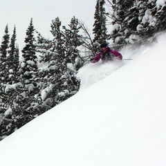 Jackson Hole - © Jackson Hole Mountain Resort